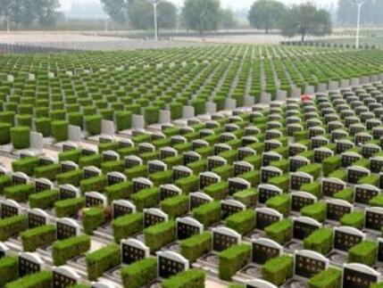 公共墓地经营管理及法规政策