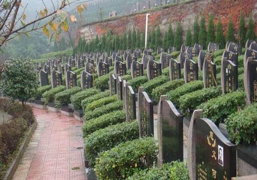 公墓陵园新推每穴占地仅有0.04平方米节地葬